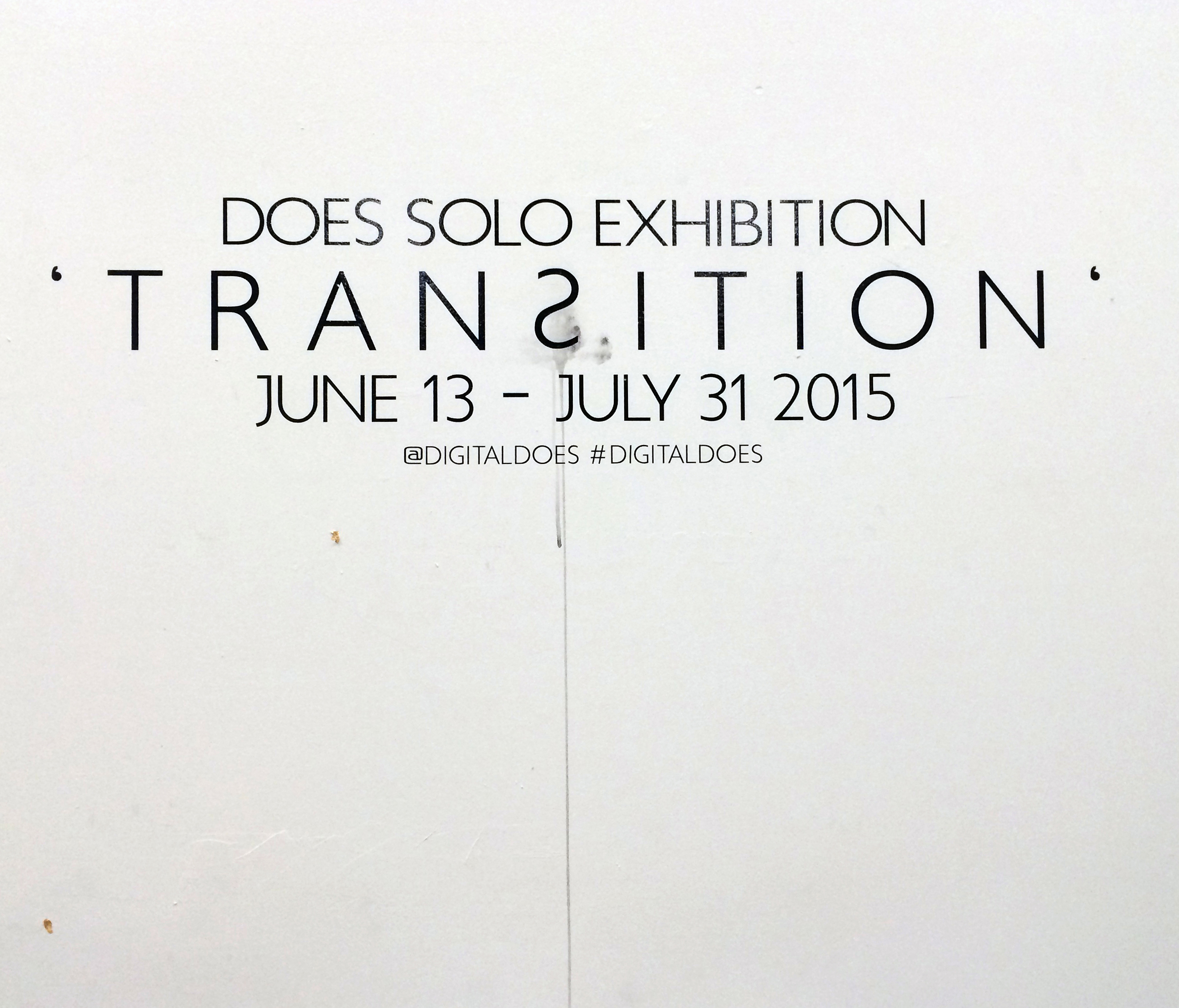 A work by Does - Exhibition transition chicago 2