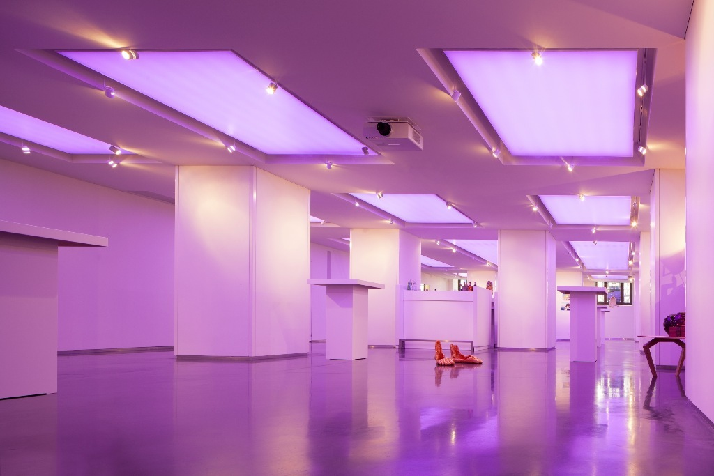 A work by Does - 5&33 Gallery Lights Pink